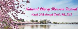 dodge cherry blossom